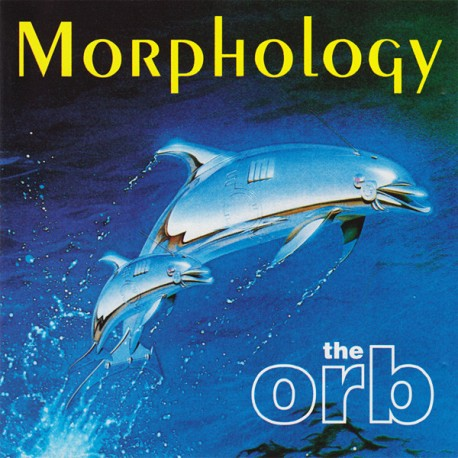 The Orb – Morphology