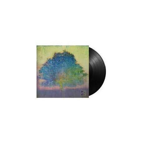 Eric Johnson – EJ (LP)