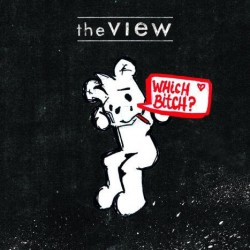 The View – Which Bitch?