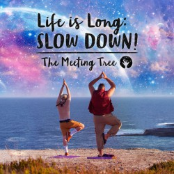 The Meeting Tree ‎– Life is Long: Slow Down!