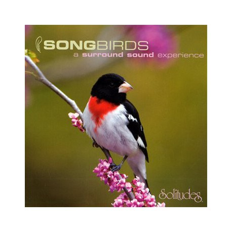 Gibson, Dan – Songbirds: A Surround Sound Experience. (SACD)