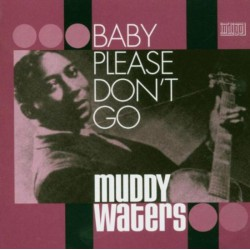 Muddy Waters - Baby please don't go